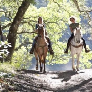 Cavalgada nas Serras de Penedo - im1098