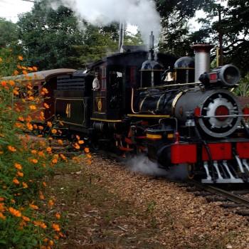 trem das aguas turistico - im1223