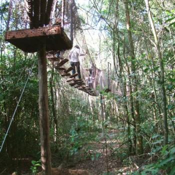 Bichomania Parque Fazenda - 1 dia de passeio - im1396